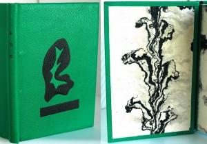 vert-noir-mat-300x210